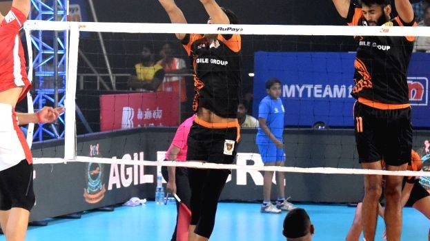 pro-volleyball-league