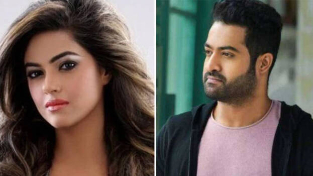Hyderabad Police Book Jr NTR Fans For Abusing Meera Chopra